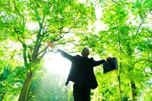 Victorian Adaptation and Sustainability Partnership