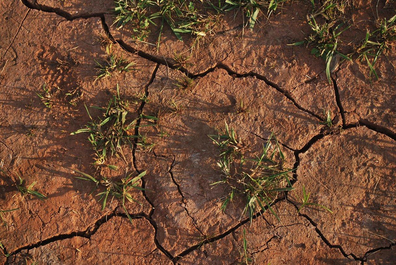 Drought Communities Programme Extension
