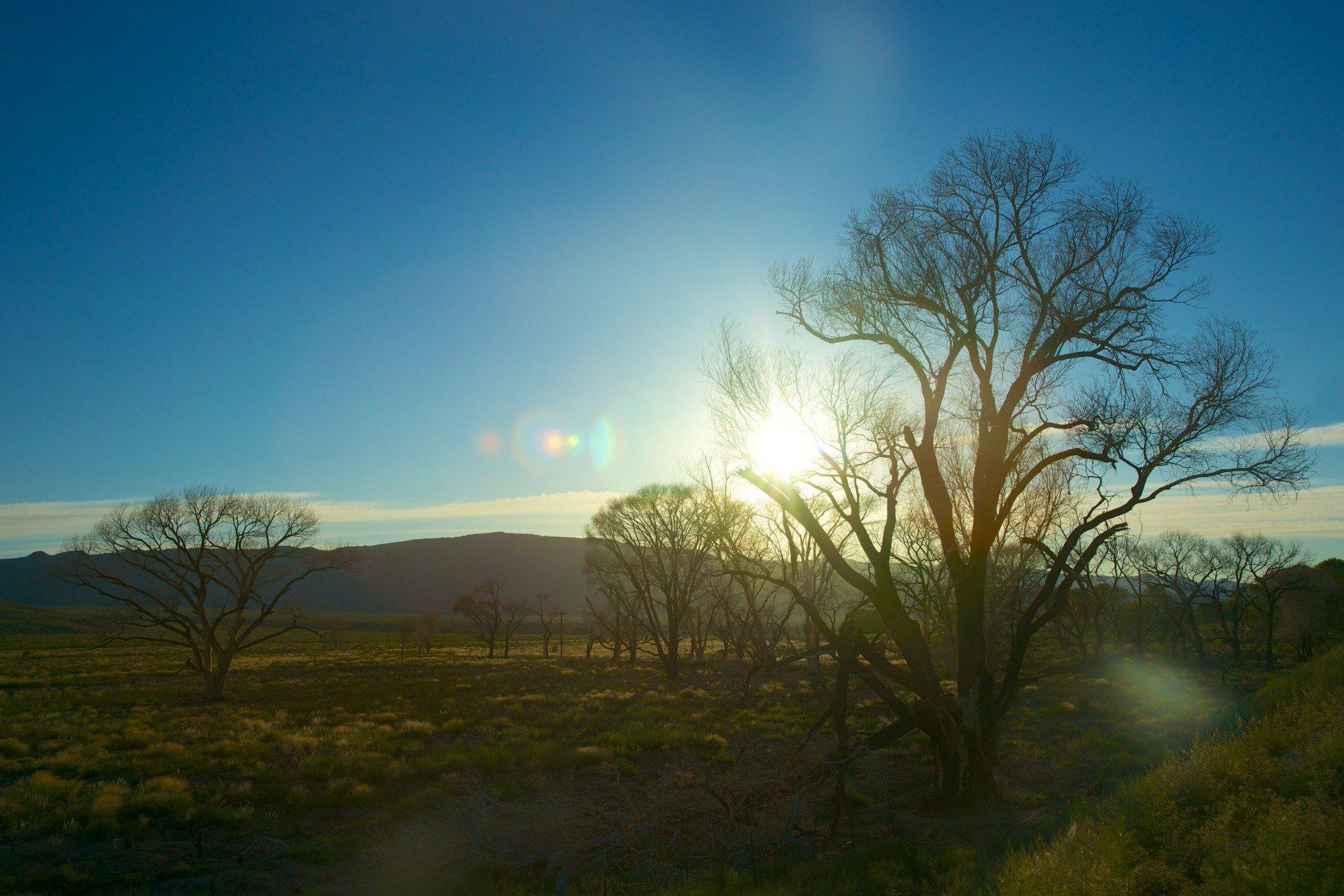 National Bushfire Recovery Fund