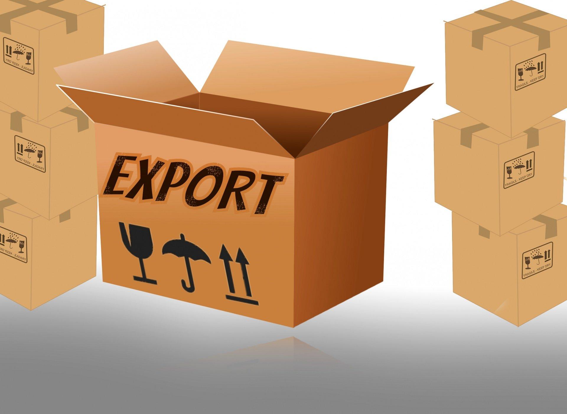 Go Global Export Program