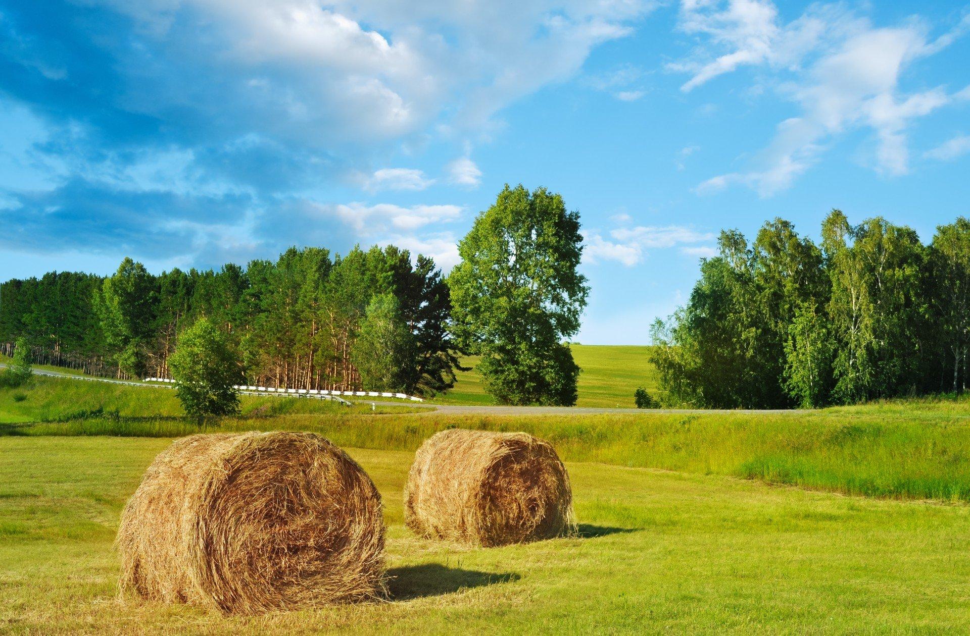 Farm Machinery Improvement Program