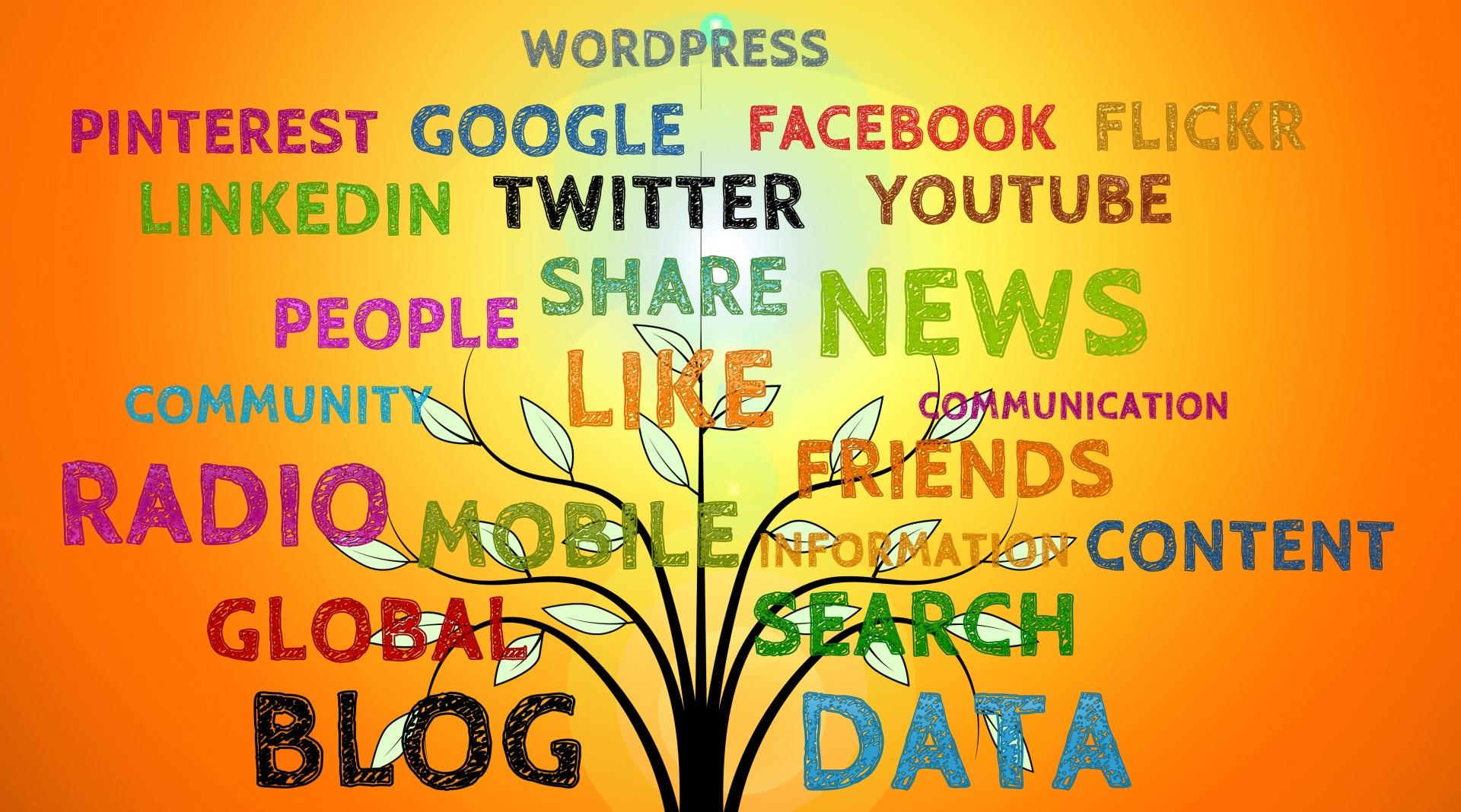 Multicultural Media Grants