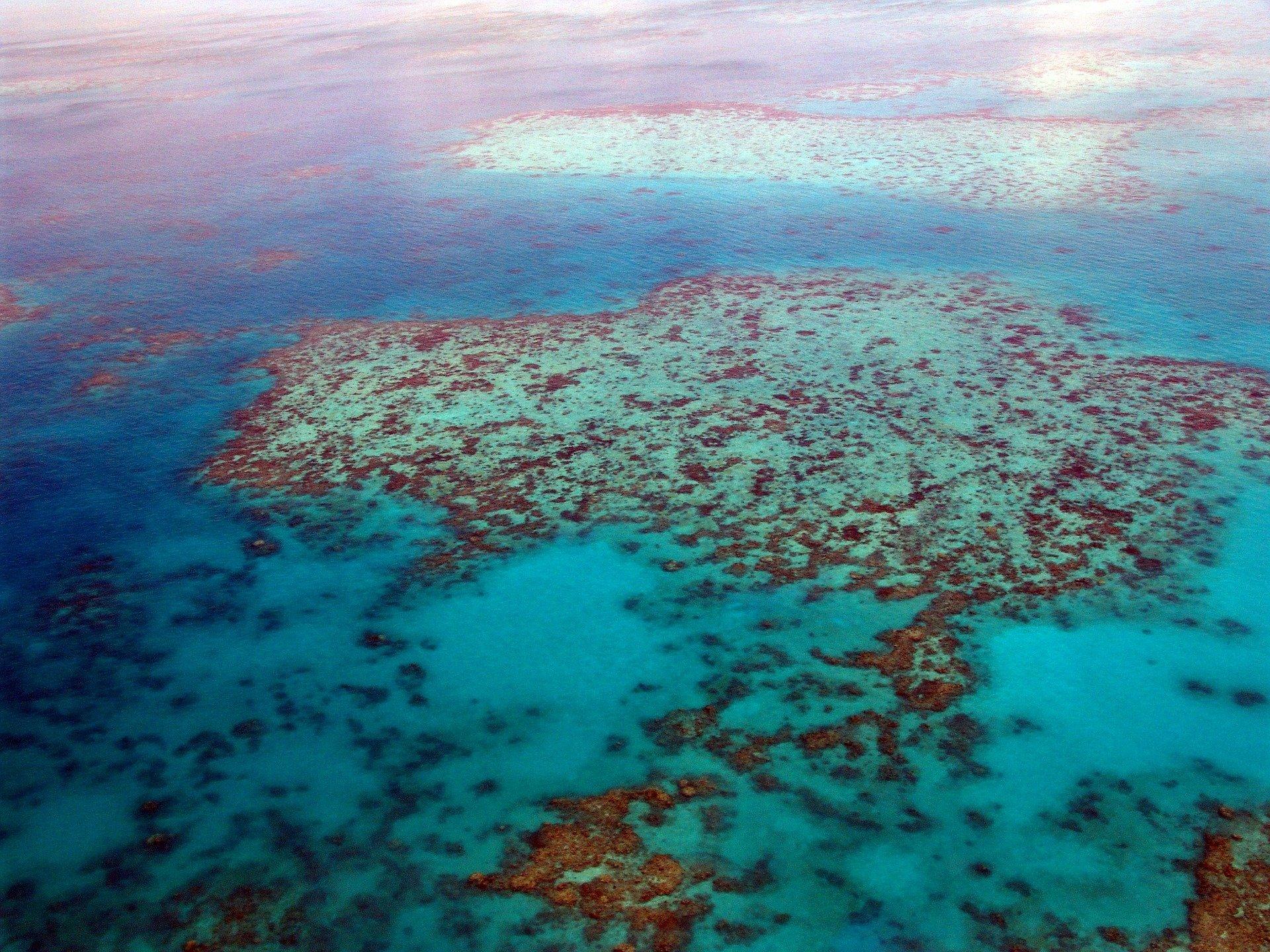 Farming in Reef Catchments Rebate Scheme