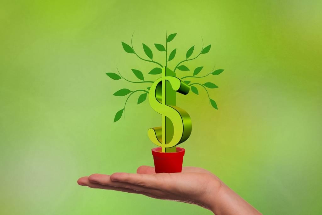 Victorian Startup Capital Fund